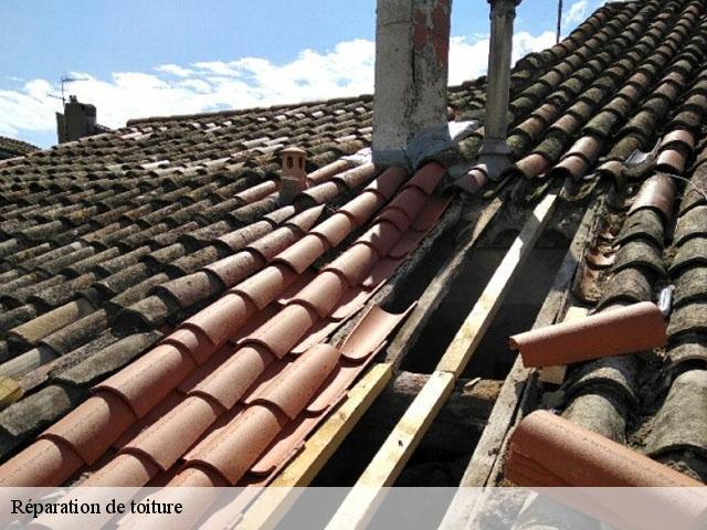 r233paration de fuite toiture 13 bouches du rh244ne t233l 0411