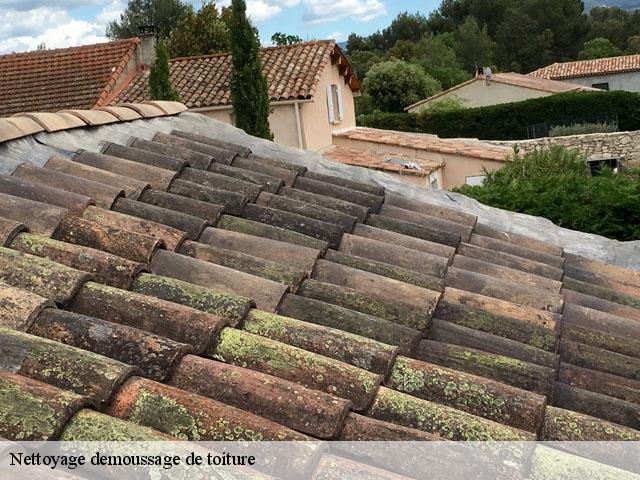 Entreprise de nettoyage demoussage toiture 13 Bouches du ...